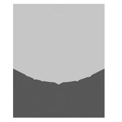 TheTot_logo_web